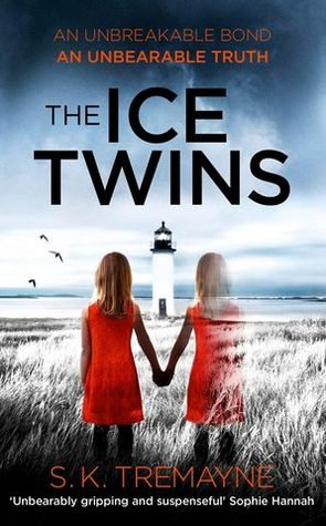 The Ice Twins - le tazzine di yoko