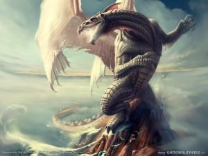drago bianco-le tazzine di yoko