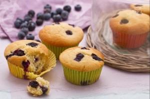 muffin al mirtillo-le tazzine di yoko
