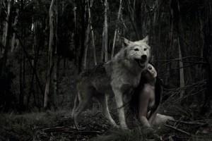 lupo e ragazza-le tazzine di yoko
