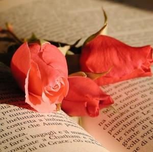 libro e fiori rossi-le tazzine di yoko