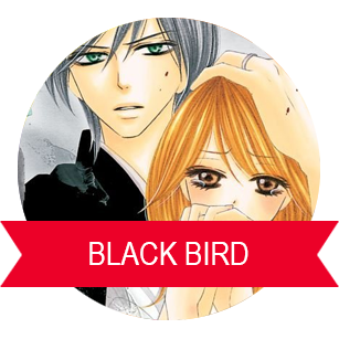 BLACK BIRD LE TAZZINE DI YOKO