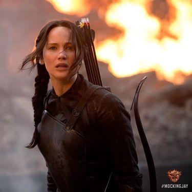 Katniss -le tazzine di yoko