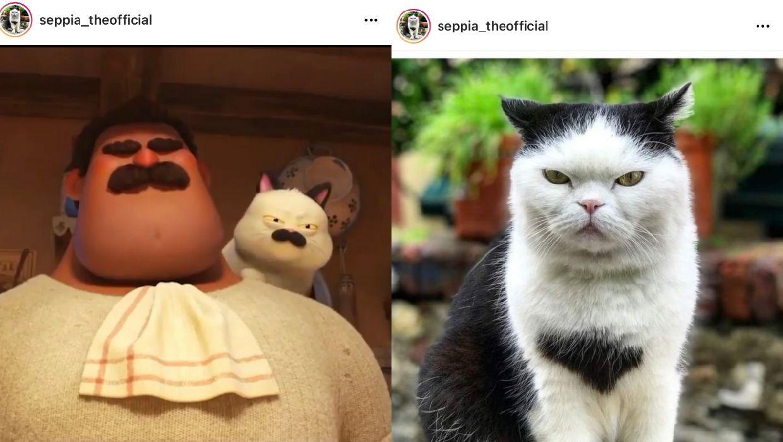 Luca film animazione Disney Pixar Seppia il gatto