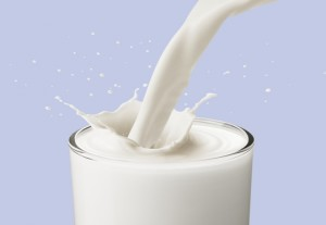 bicchiere di latte-le tazzine di yoko