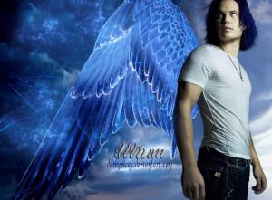 illium arcangelo-le tazzine di yoko