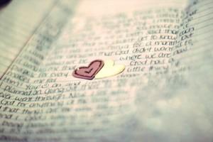 lettera d'amore jenny han libro-le tazzine di yoko