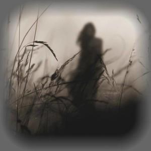 ombra oscura-le tazzine di yoko